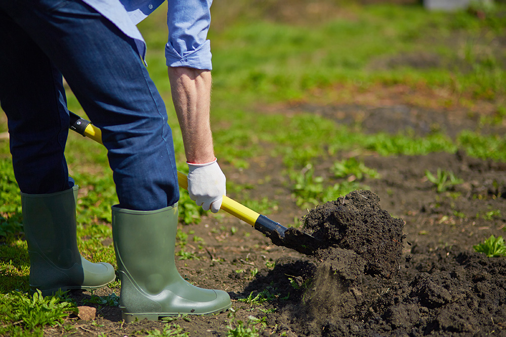 Soil Improvement - Edmonton Horticultural Society