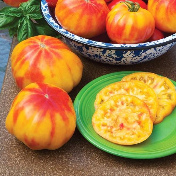 Mr Stripey heirloom tomato