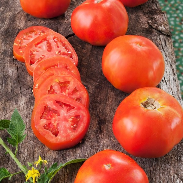 Rutgers Heirloom Tomato